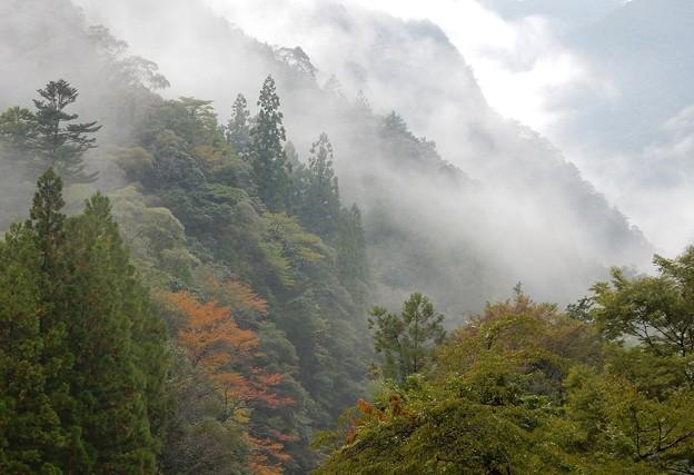 写真: 霧越峠