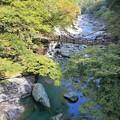写真: 祖谷峡のかずら橋