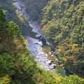 Photos: 祖谷峡