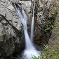 写真: 布引の夫婦滝
