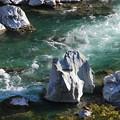 写真: 小歩危峡の激流