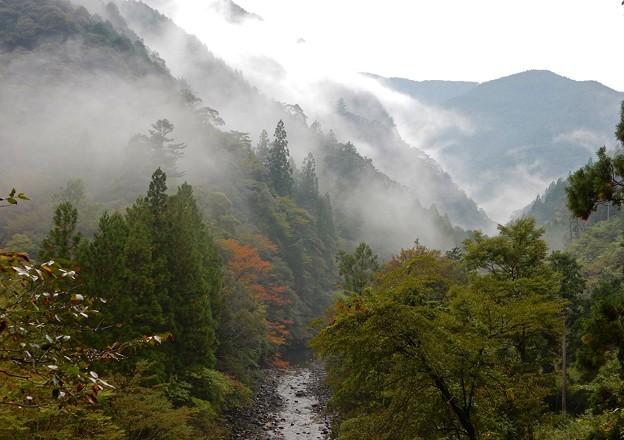 写真: 峠は霧の中
