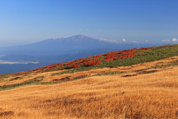 写真: 彩り高原の美観