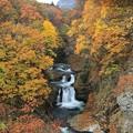 写真: 鳳鳴四十八滝
