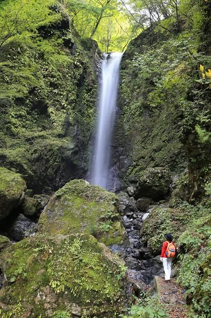 写真: 直瀑の美しい神通滝
