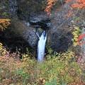 写真: 岩壁の不動滝