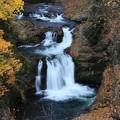 写真: 棒目木の滝