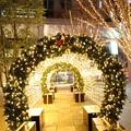 写真: 聖夜の光の回廊