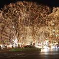 Photos: 煌く街