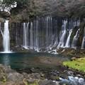 写真: 富士山麓の白糸の滝