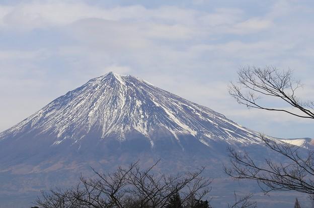 静岡からの富士