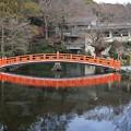 Photos: 湧玉池