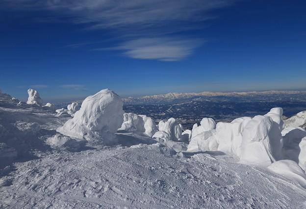 写真: 樹氷の造形美