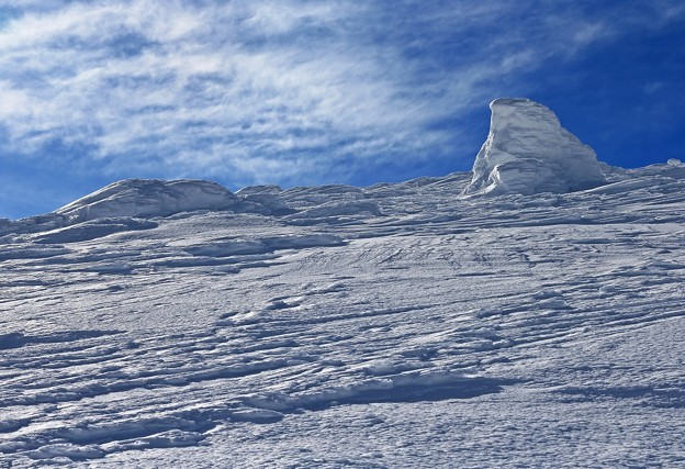 写真: 極寒地帯は銀色世界