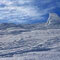 Photos: 極寒地帯は銀色世界