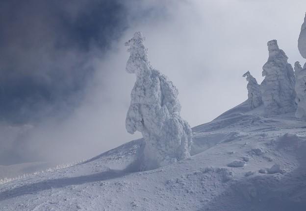 写真: 風雪の怪物