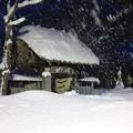 写真: 猛烈に降る雪