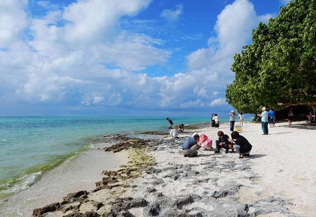 竹富島の星砂浜