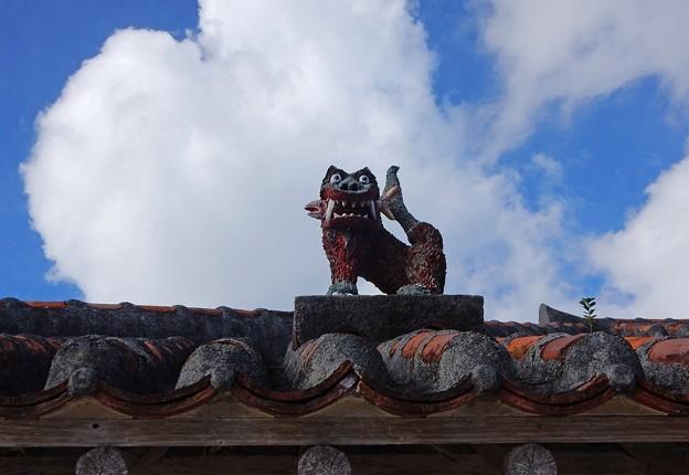 Photos: 竹富島のシーサー