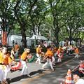 Photos: 子すずめ千人踊り