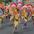 初夏を彩る伝統祭り