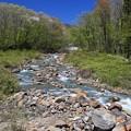 Photos: 新緑と川の流れ