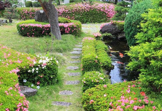 Photos: 梅雨入り宣言