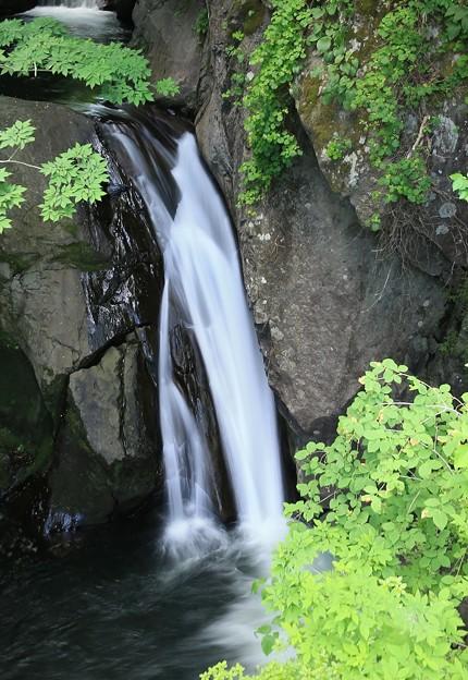 Photos: 荒沢の滝