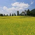 Photos: 高原の教会