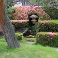 Photos: 灯篭のある庭池