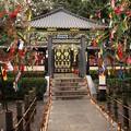 Photos: 瑞鳳殿の七夕飾り