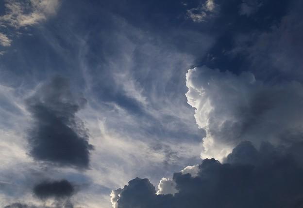 Photos: 嵐 雲
