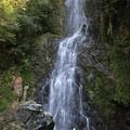 Photos: 滝行の清水の滝