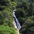 谷間の観音滝