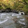渓谷の流れ