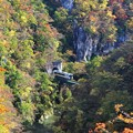 Photos: 鳴子峡走る列車