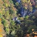 鳴子峡走る列車