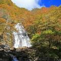 彩りの白糸の滝