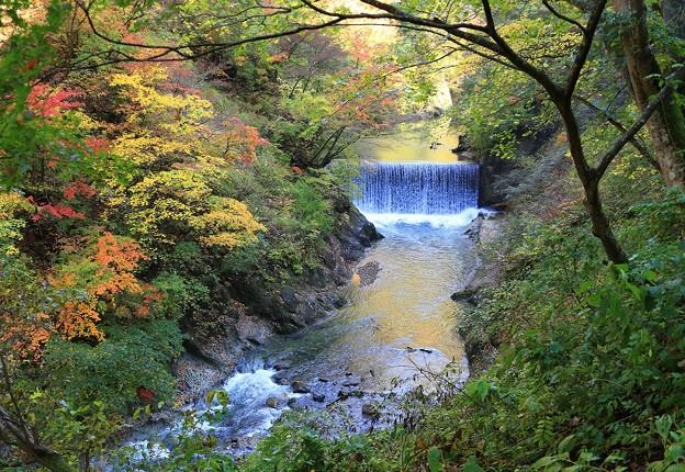 Photos: 深い谷間の大谷川