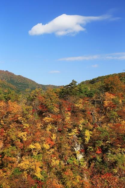 Photos: 鳴子の美々しい紅葉