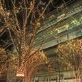 Photos: 街の輝き