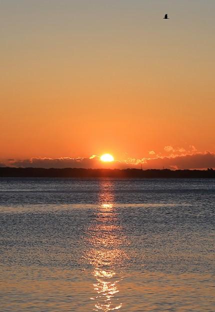 Photos: 松島湾の日の出