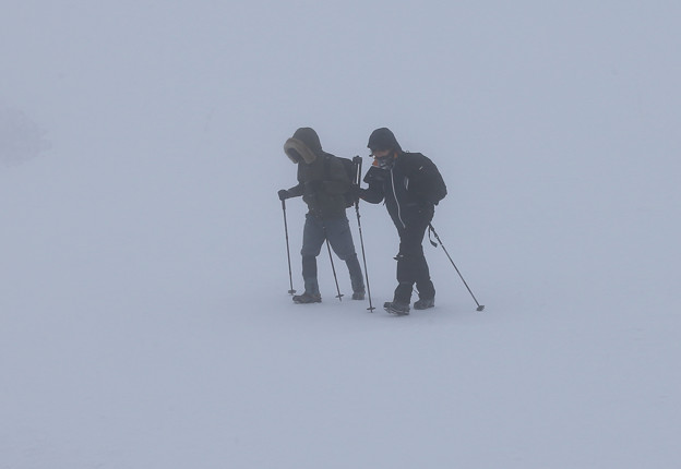Photos: 吹雪を歩く