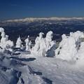 Photos: 蔵王樹氷と朝日連峰