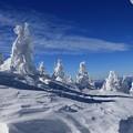 地蔵岳の樹氷