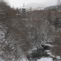 Photos: 深山の五重塔