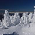 Photos: ああ樹氷