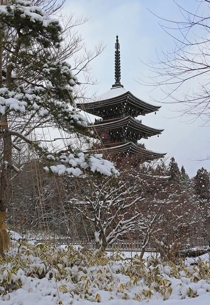 雪の風情ある五重塔