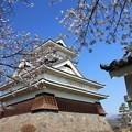 Photos: 桜咲く上山城
