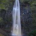 幽玄な玉簾の滝